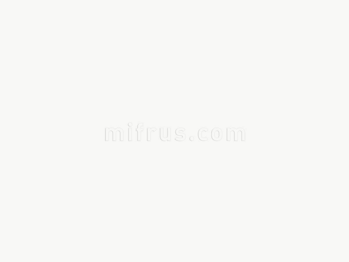 RAUVISIO BRILLIANT фасадное полотно 5000В BIANCO 2800х1300х20 мм 15802421001