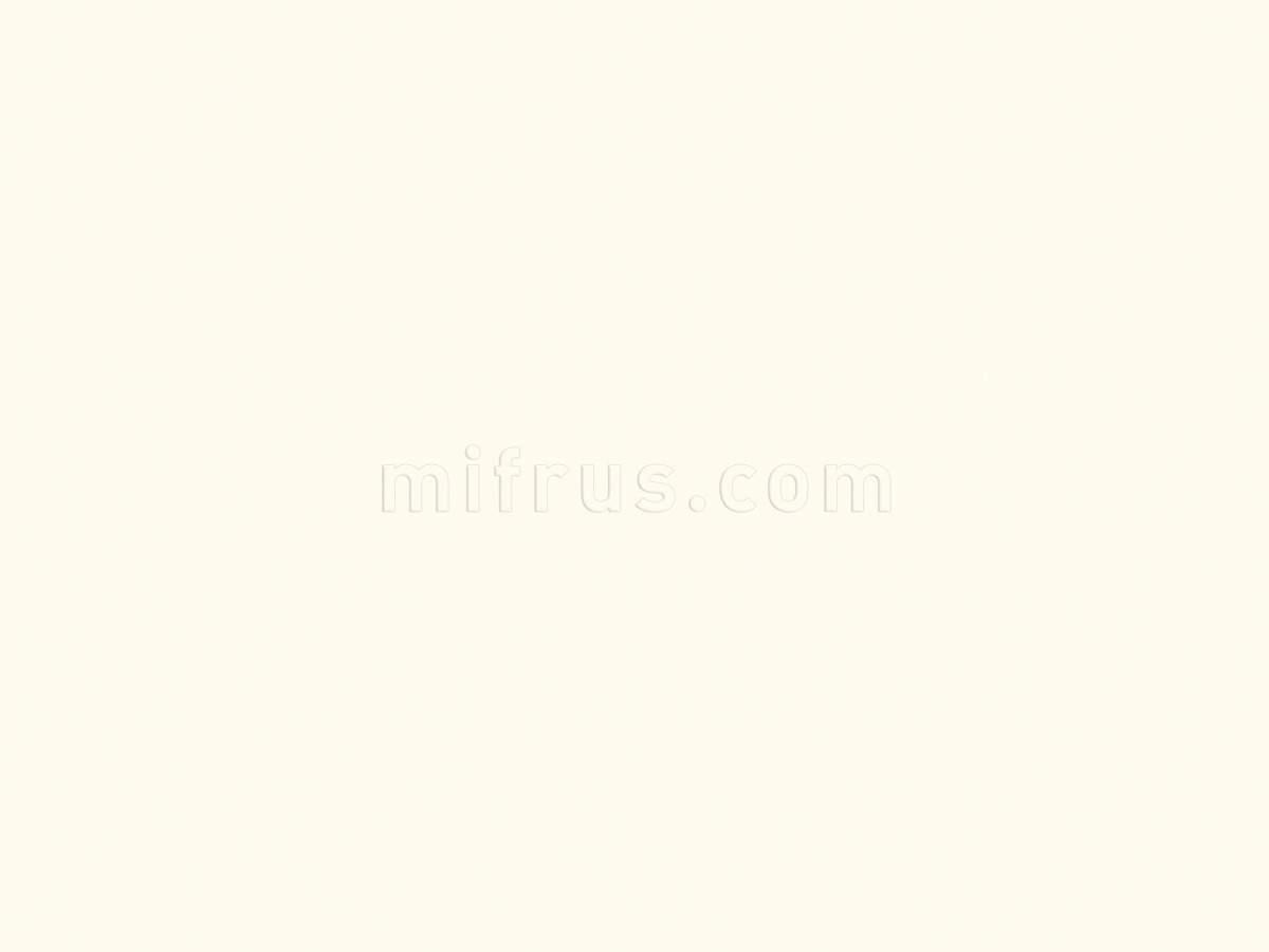 Стен. панель 4*600*3000 Платиновый белый W980 (ST2) (факт. ширина 655мм)