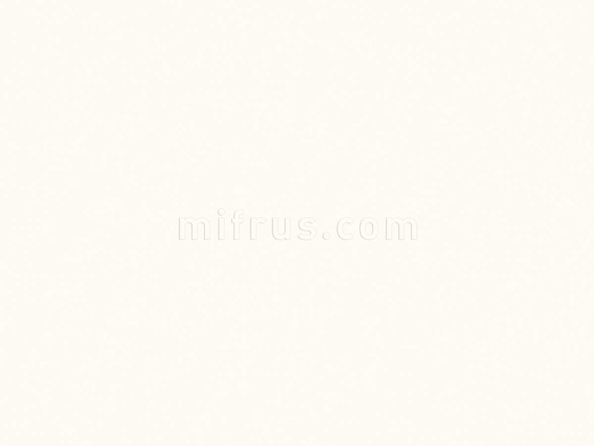 Стен. панель 4*600*4100 Белый премиум W1000 (ST88) (факт. ширина 655мм)