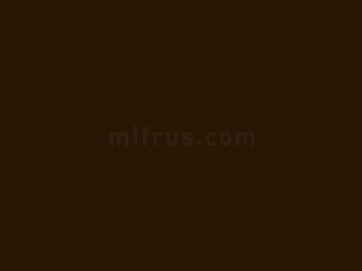 RAUVISIO BRILLIANT фасадное полотно 1679L MARRONE 2800х1300х20 мм 15802421024